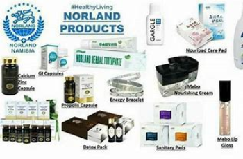 NORLAND NIGERIA END OF THE YEAR PROMO